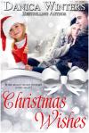 danica w christmas wishes